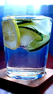 G&T With Ice and Slices